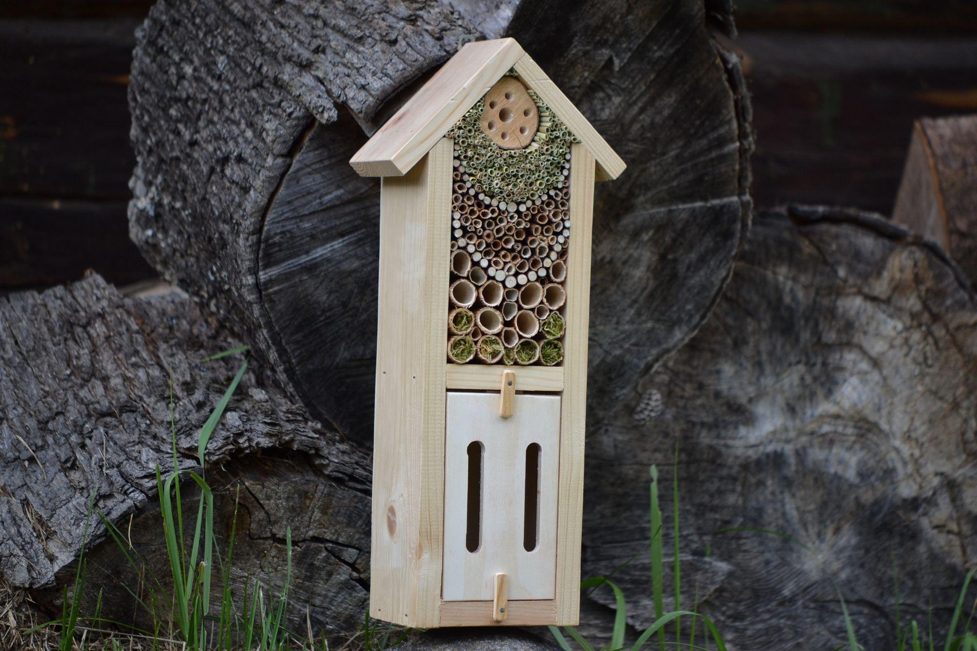 Nauji nameliai vabalams ir drugeliams !