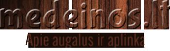 Medeinos tinklaraštis Logo