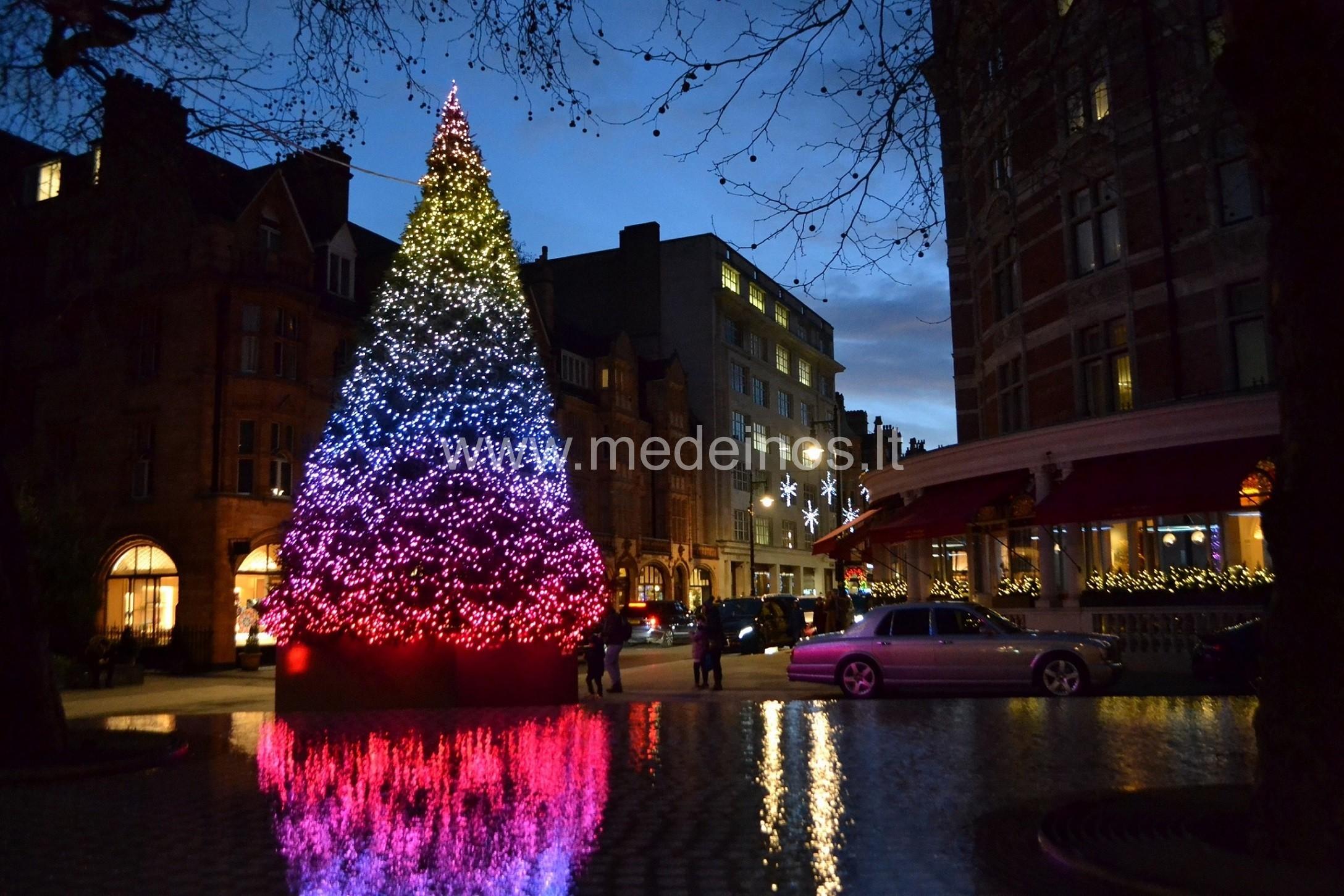 Gražiausios Londono kalėdinės eglutės