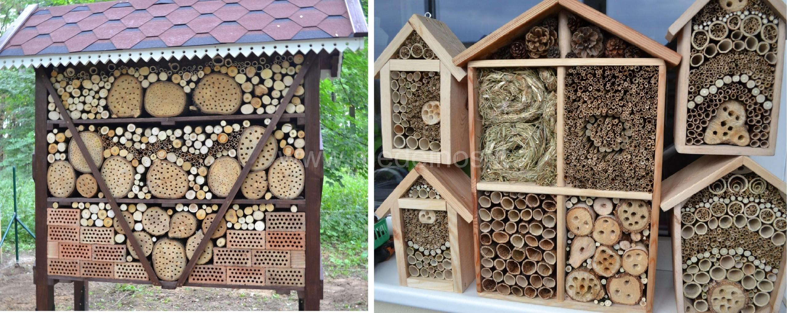 Viešbučiai vabzdžiams - gamtai ir žmogui