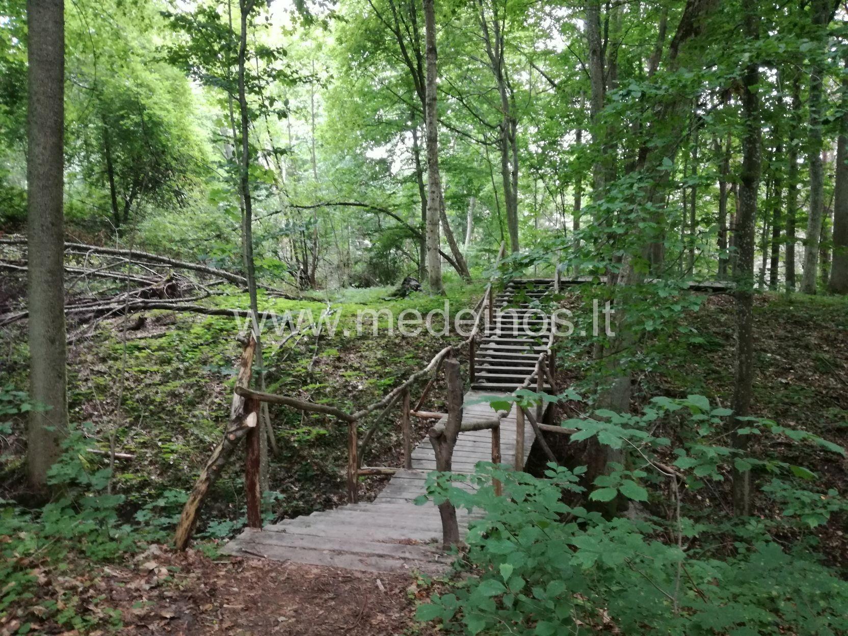 Kukuliškių piliakalnis pajūryje